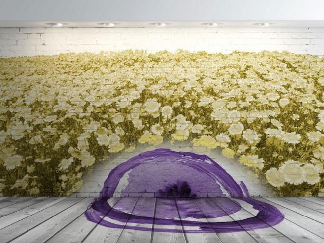 adesivo-margherite-fiore-installazione