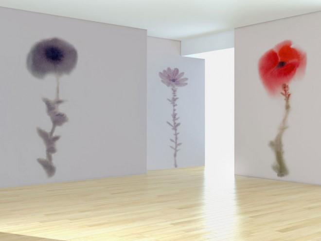 adesivo-papavero-papavero2-fioreviola-installazione